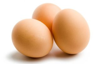 eggs great source of protein muscle metabolism