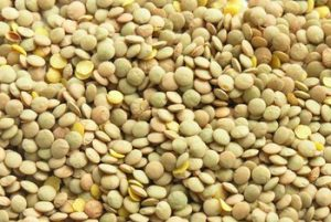 lentils food for weight loss