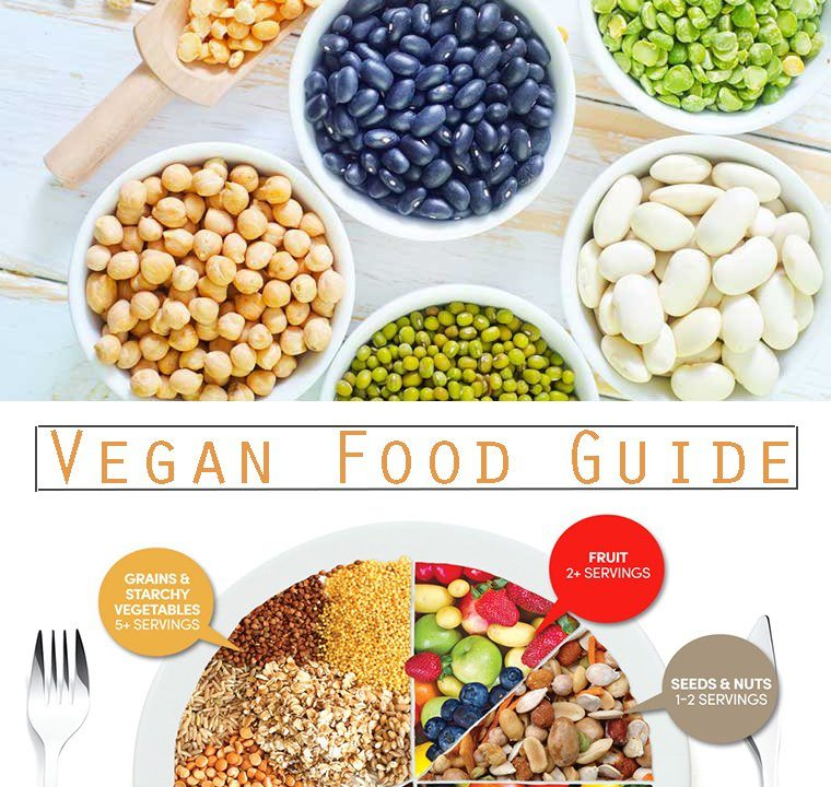 vegan-food-protein-guide-760x720 Vegan Dieting -- Lose Weight & Get Healthy Health & Wellness Weight Loss Super Foods Weight Loss Tips  vegan Diet animal free diet