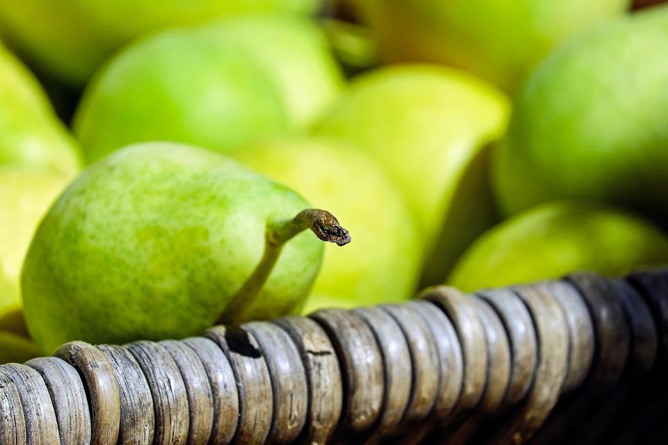 fresh organic pears for fiber
